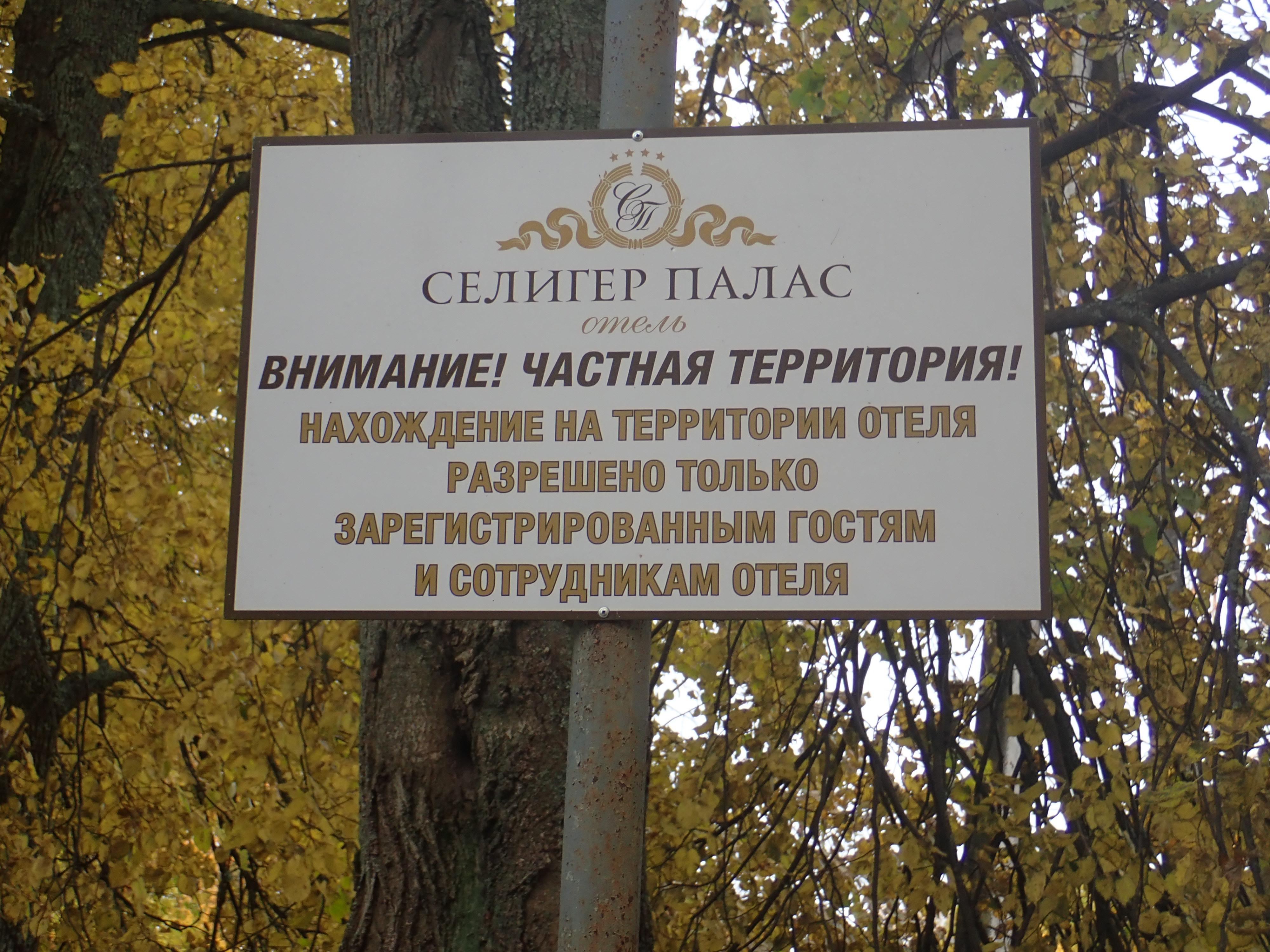 В усадьбе Толстых вырубают старинный парк